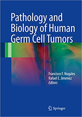 Pathology and Biology of Human Germ Cell Tumors 1st ed. 2017 Edition-Original PDF