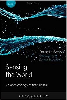 Sensing the World: An Anthropology of the Senses (Sensory Studies Series)-Original PDF