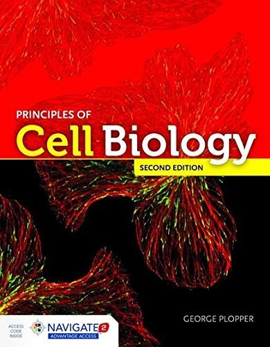 Principles Of Cell Biology 2nd Edition – EPUB