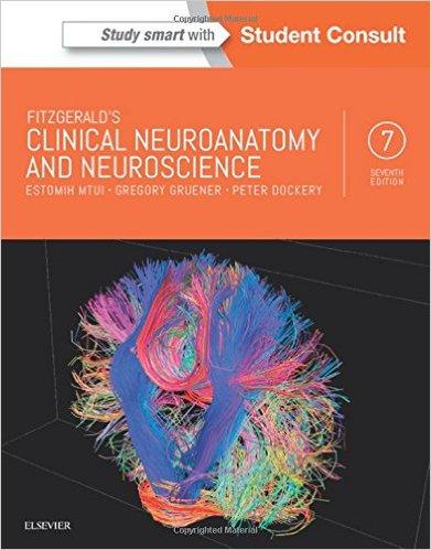 Fitzgerald's Clinical Neuroanatomy and Neuroscience, 7e – Original PDF