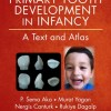 Primary Tooth Development in Infancy: A Text and Atlas 1st Edition – Original PDF